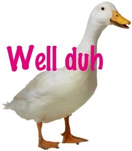 "Duck saying ""well duh"""
