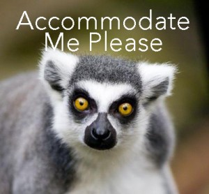Lemur Accommodate